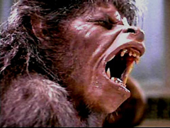Dimension To Remake 'An American Werewolf in London'
