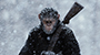 WAR FOR THE PLANET OF THE APES: First Trailer and Poster Revealed!